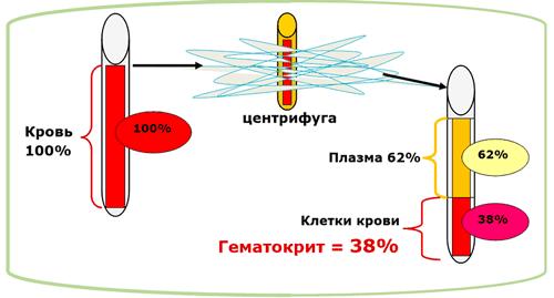пониженный гематокрит