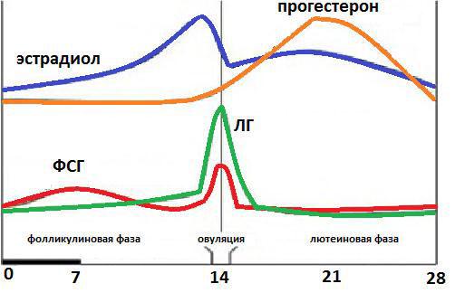 Изменение концентрации фолликулостимулирующего гормона