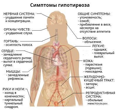 Какие симптомы наблдаются при снижении функции щитовидной железы