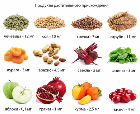Фрукты, овощи, орехи и крупы с высоким содержанием железа