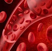 Количество эритроцитов у мужчин в норме