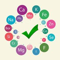 Роль микроэлементов в организме человека