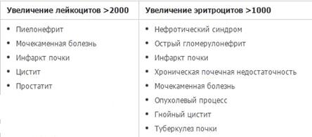 Анализ мочи по нечипоренко что показывает у медицинская справка для вида на жительство в россии цена
