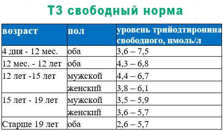 Нормы по полу и возрасту Т3 свободного
