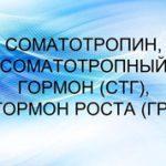 Что такое соматотропин и где образуется гормон роста