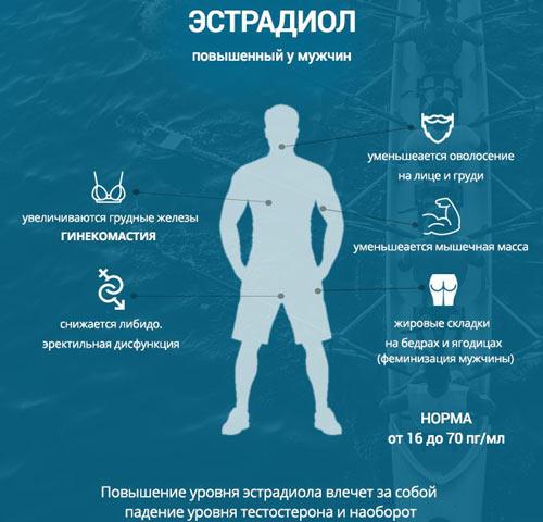 Влияние повышенного эстрадиола на организм мужчины