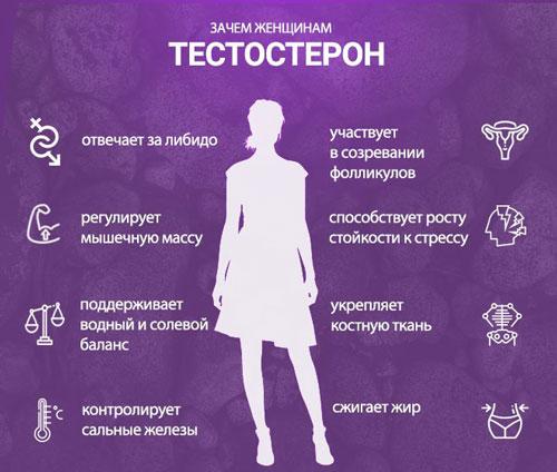 За что отвечает гормон тестостерон у женщин