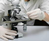 Информативность общего анализа крови при онкологии