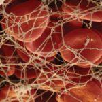 анализ на фибриноген