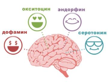 Гормоны счастья и удовольствия