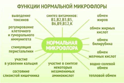 Функции нормальной микрофлоры