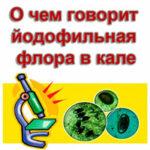 Чем грозит наличие йодофильной флоры в кале